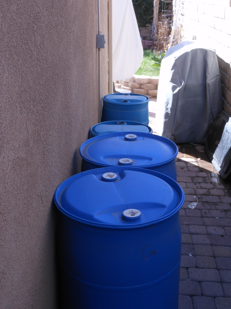 My water barrels.  See my BBQ in the background?