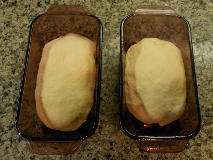 Two imperfect loaves which will make perfectly lovely bread!
