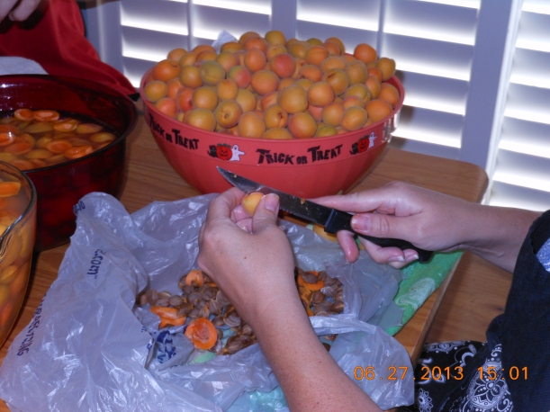 First, I washed the apricots.  Then I pitted the apricots.