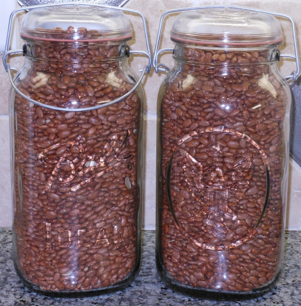 I started with beans.  I store my dry beans in these nifty Gallon size Ball Jars.  These jars are not for canning, but are GREAT for pantry storage.  Each jar holds about 16 cups of beans (or about 8 pounds)