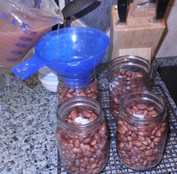 Then I took some of the liquid I used to cook the beans, and I added it to the jars (leaving 1 inch head space).