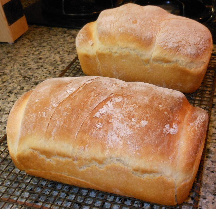 Here's my latest batch of Easy, Peasy Bread,, made just last night.