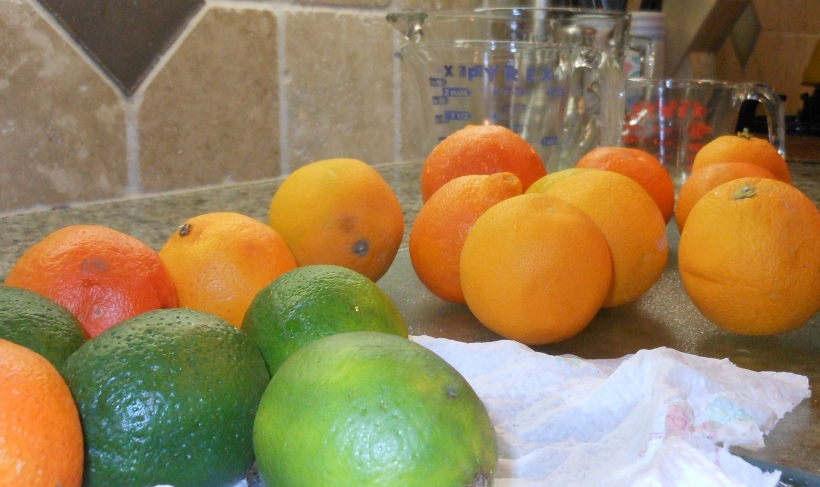 Next, I gathered my fruit and began to prep it.