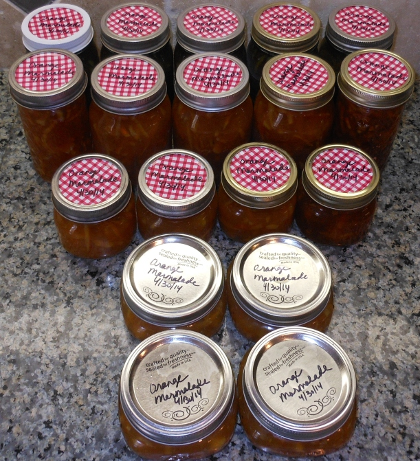 Look at all those jars of yummy, marmalade goodness!