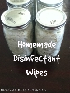 HomemadeDwipes