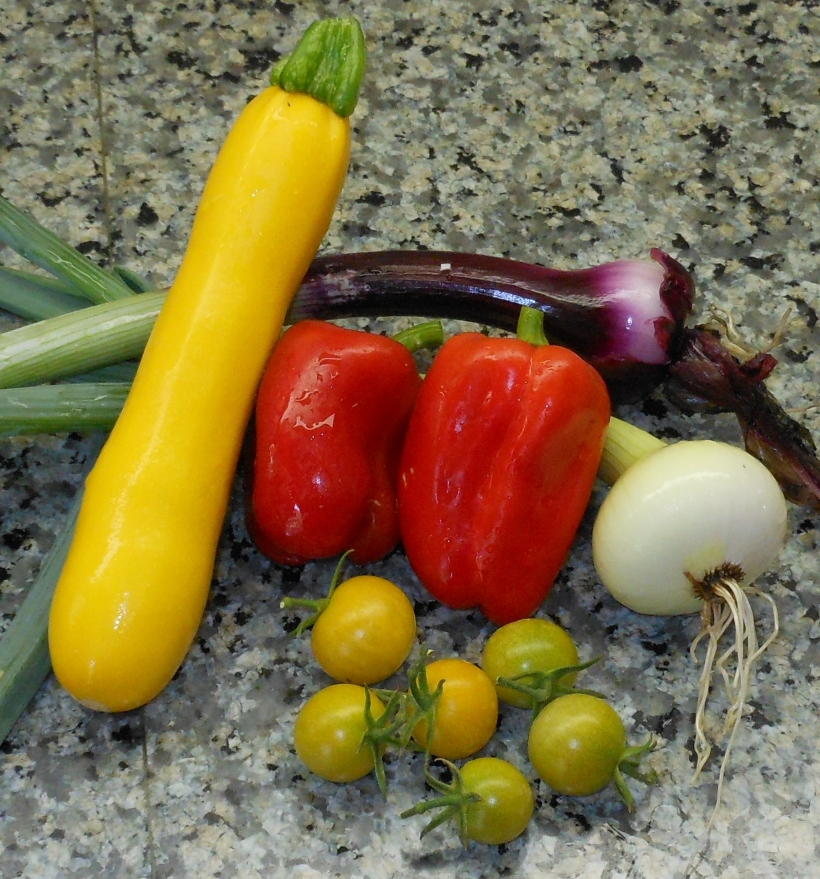 I picked these today: 1 summer squash, 2 red peppers, several yellow cherry tomatoes, and 2 onions (1 red and 1 white).  Dinner will be a delicious affair!
